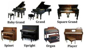 Types of Pianos Spinet Baby Grand Piano Grand Piano Square Grand Piano Upright Piano Player Piano Organ